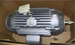 Baldor Inverter Drive Motor - 09E382W841G1
