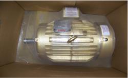 Baldor Motor - 06H02W09
