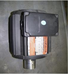 Reliance Brand AC Motor - P14A5803M-VX